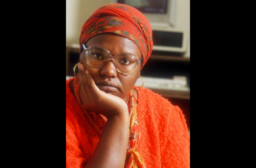 Gloria Naylor in orange outfit and head wrap with brown blurry background