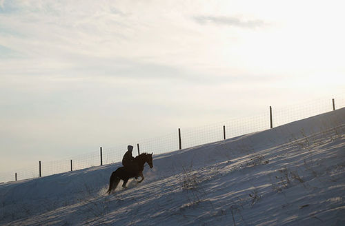 A Native American rider climbs a hill outside Oceti Sakowin Camp on the edge of the Standing Rock Sioux Reservation on December 3, 2016, outside Cannon Ball, North Dakota.
