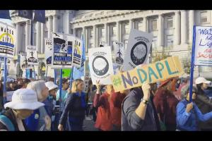Colorlines screenshot of #DayofAction video by Greenpeace USA on Twitter, taken on November 15, 2016.