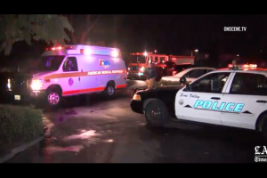 Red-and-white ambulance near red fire truck and white and blue police car against dark night sky