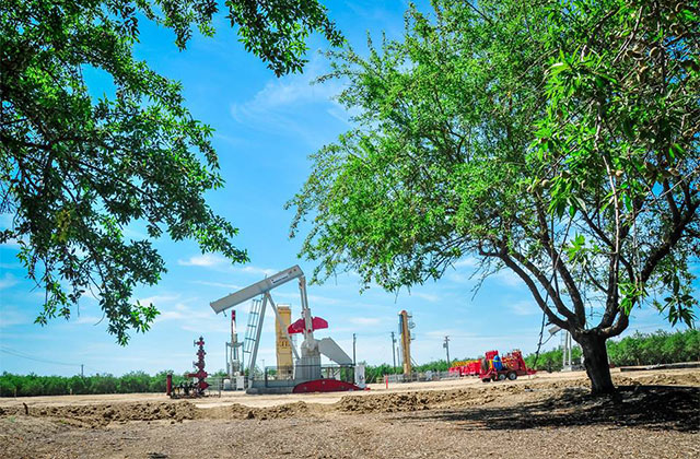 A drilling site in Wasco, California, extracts natural in the middle of an orchard. (Photo: Brooke Anderson/Center on Race, Poverty and the Environment)