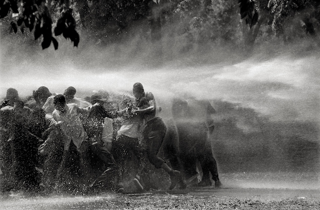 Black-and-white image of Black people sprayed by fire hose water in front of trees