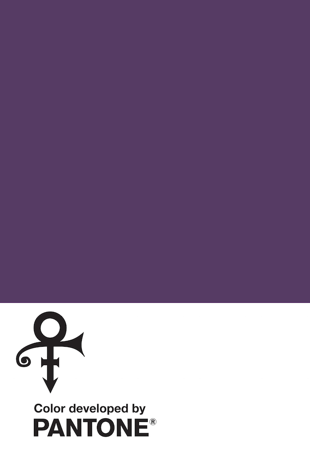 Purple block with white block with black text underneath