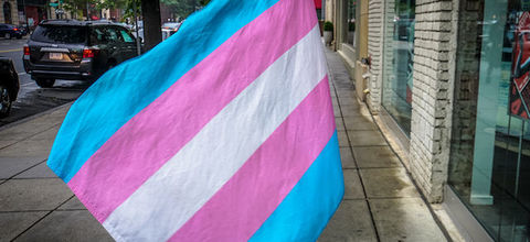 A pink, blue and white flag symbolizing transgender rights