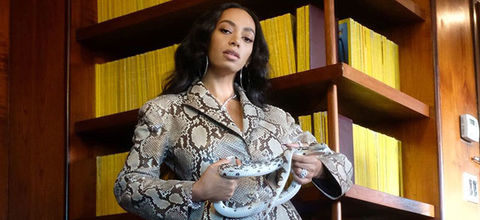 Solnage Knowles. Black woman with long hair wearing snake print outfit while holding a snake.