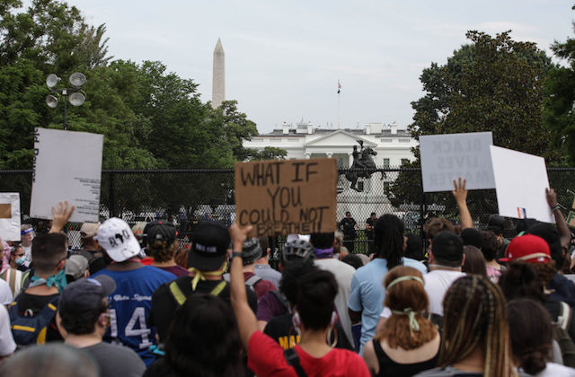 The backs of the heads of protestors holding signs in Lafayette Square, in front of the White House.