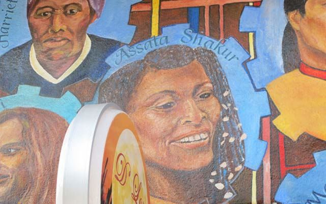 the struggle of assata shakur Posts about assata shakur written by charles dickey against profiling practices and present-day vigilantes like davis, assata shakur was active in the 1970s in the struggle for black and in the face of that, black youth are proudly wearing hoodies proclaiming assata taught.