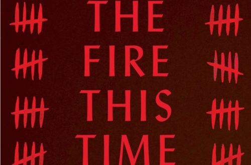 """Black letters on a red background read """"The Fire This Time."""""""