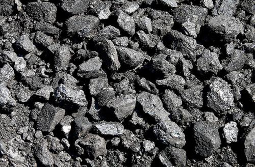 Pieces of coal.