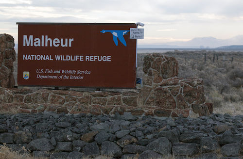 Brown sign with white text, with smaller white sign with black text attached, against background of brown and green flora