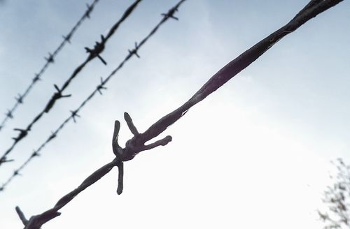 Black barbed wire with blue sky in background
