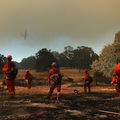 Several incarcerated firefighters in orange jumpsuits look on as a plane passes over a burned down field.