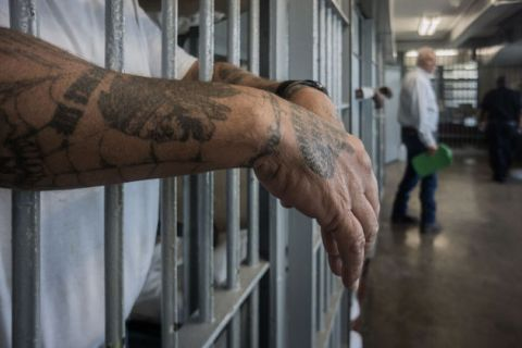 A person's hands and arms, which are covered in tattoos, can be seen having through the bars of a prison cell.
