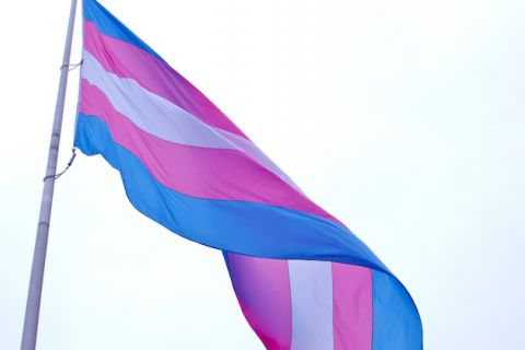 Trans flag. White, pink and blue flag waves in the breeze.