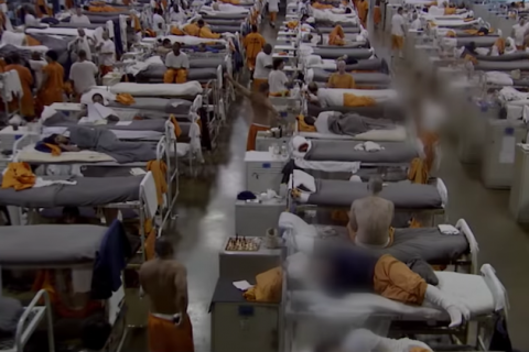 Grey floor with grey beds and people in orange prison uniforms