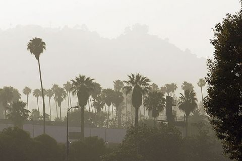 A hazy sky looms over palm trees and traffic along the 101 freeway near Hollywood, on June 14, 2004, in Los Angeles, California.