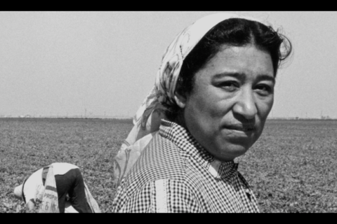 Close up shot of Brown woman with hair wrapped in a scarf outside in a field. A farmworker is bent over behind her.