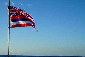 The Hawaiian flag