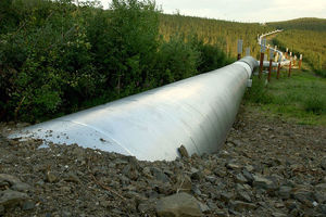 A buried section of the Trans-Alaska Pipeline emerges a few miles north of the Yukon River on July 21, 2002 in Fairbanks, Alaska.