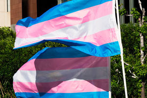 Trans Pride flags with blue, pink, white, pink, blue stripes.